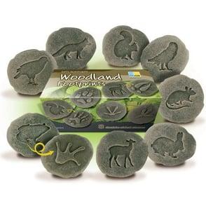 Woodland-Footprints-Stones-112-YUS1072