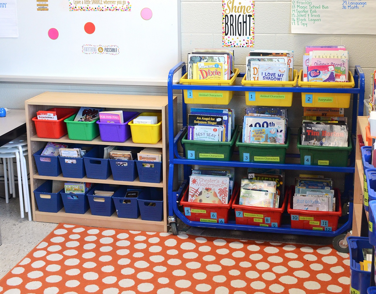 Genius Book Storage Ideas For the Classroom