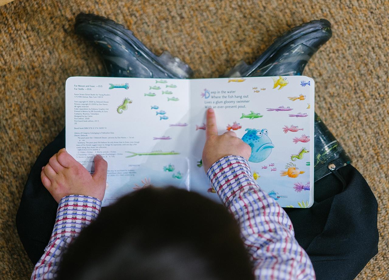 adorable-book-boy-1250722