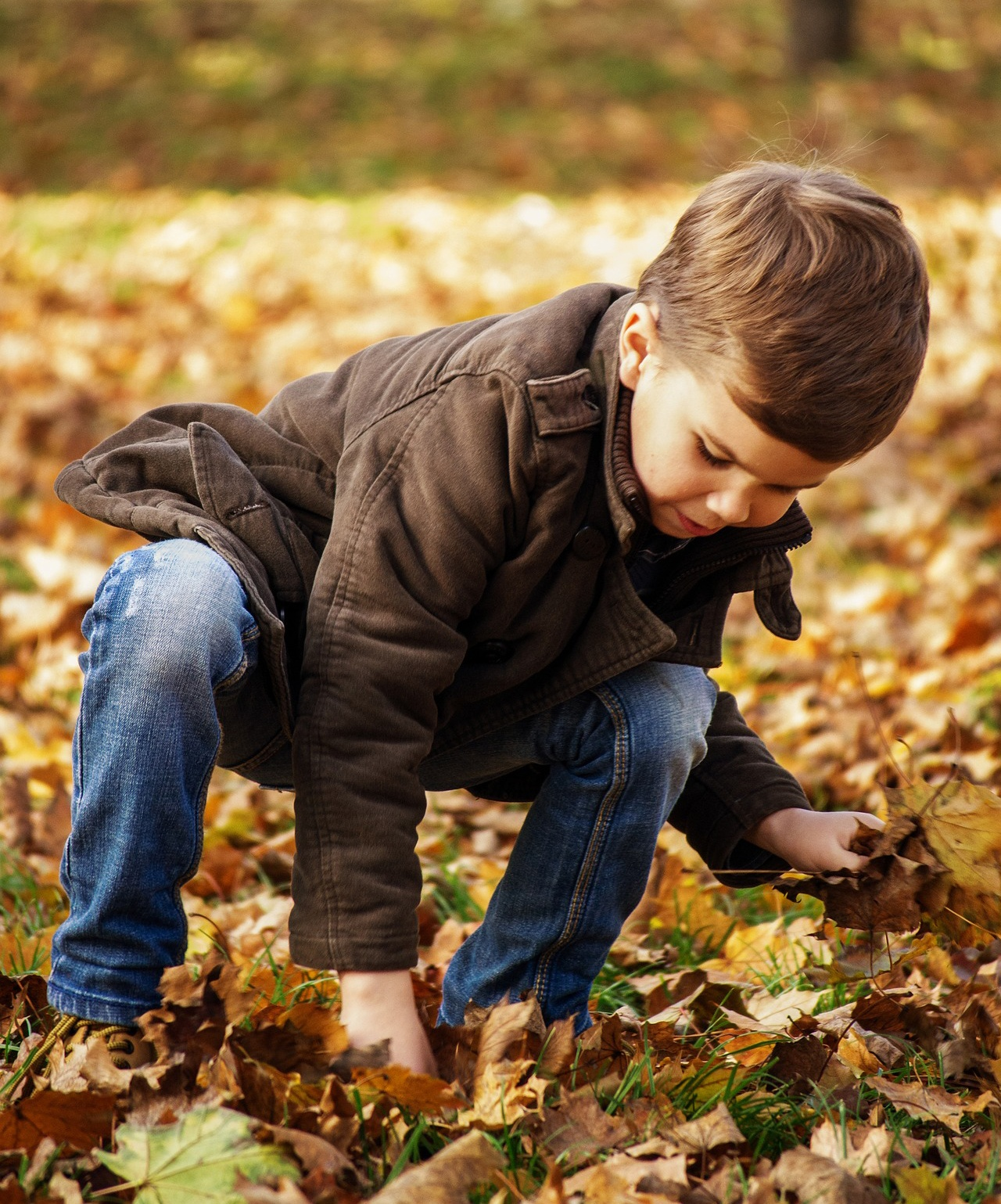 Activities for Fall Learning